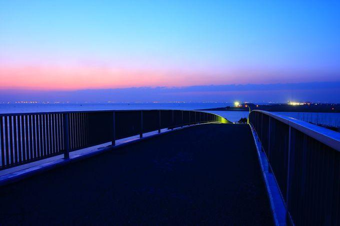 「中の島大橋」の最上部から望む夜景