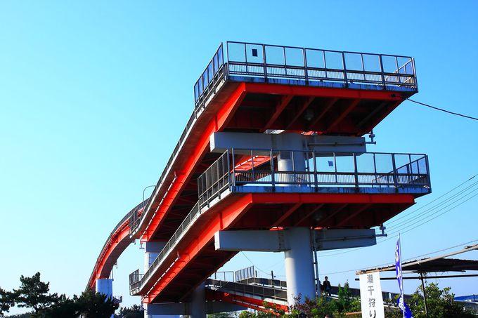 高低差の大きい「中の島大橋」を目の前にしてビックリ!