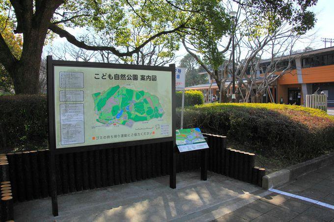 背後にそびえる森林は自然多き公園の証拠!入口付近