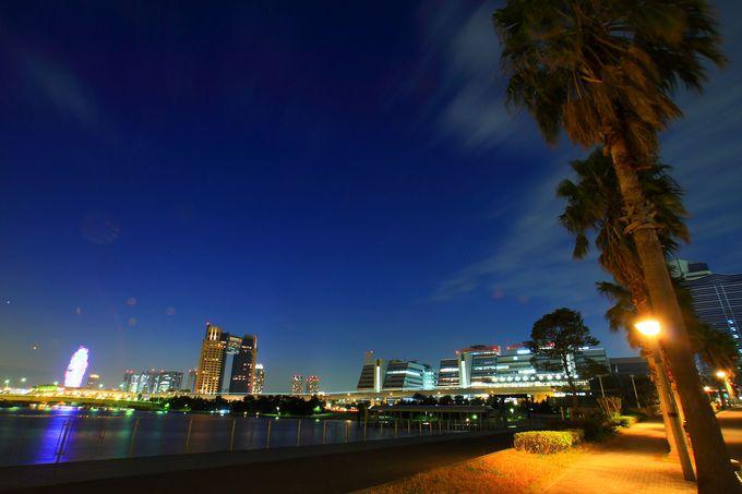 「青海南埠頭公園」「水の広場公園」「有明西ふ頭公園」の水辺系