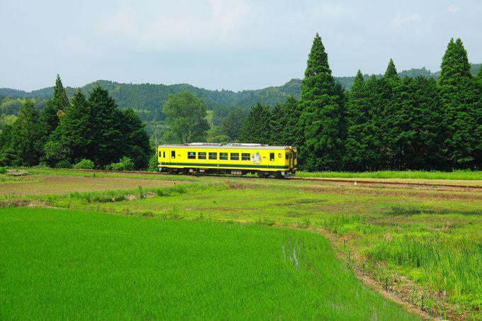 のどかな田園地帯を行く列車を狙おう!「総元駅〜西畑駅」