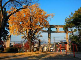 創建時は30万坪の境内?!イチョウが美しい京都「豊国神社」
