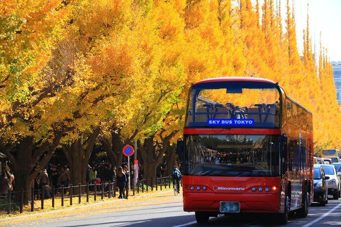 都内でもメジャーな観光スポットだけあって観光バスも訪問!