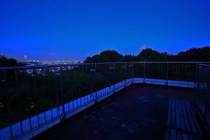駅から直結!見晴らしも最高!「弘明寺公園」
