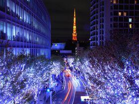 冬に訪れたい東京の観光スポット10選!冬ならではの街や自然も
