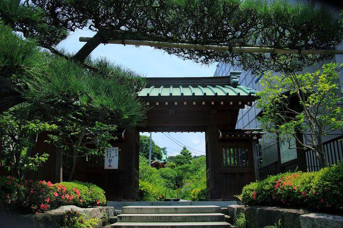 若宮小路の鎌倉駅前に山門を構える「大巧寺」