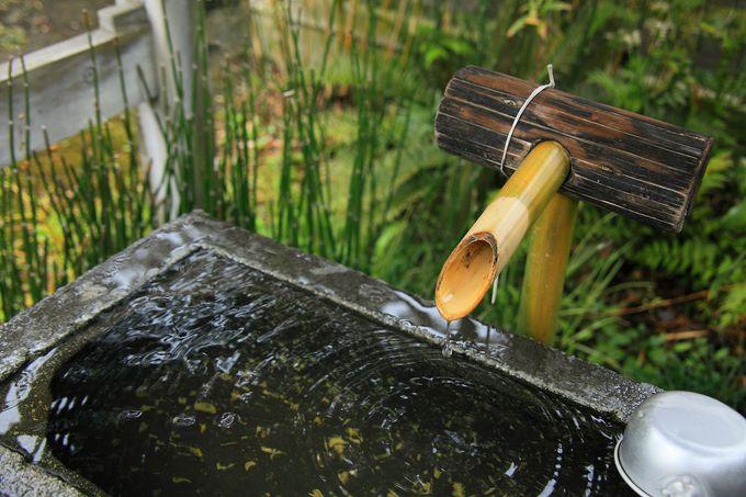 手水鉢の場所は裏門の手前と少々わかりにくい