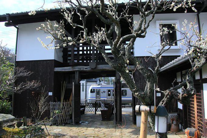 「北鎌倉古民家ミュージアム」とは?