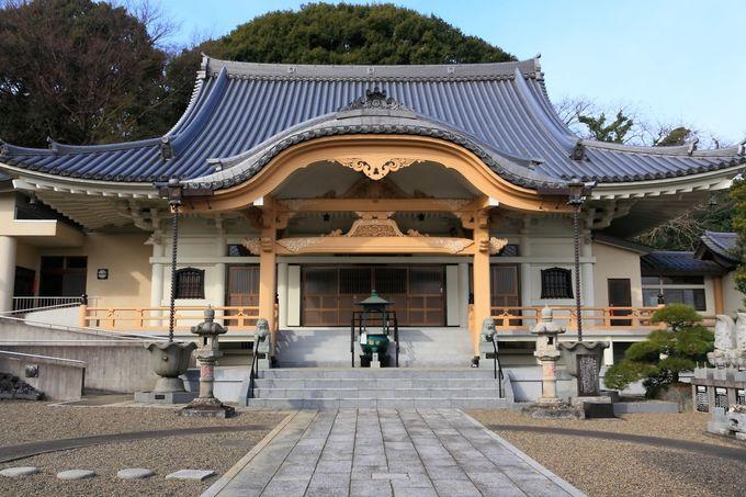 綺麗な寺院建造物も見ごたえあり!