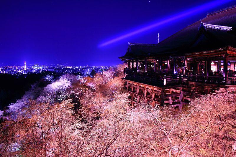 京都旅行を計画しよう!押さえておきたい10のこと