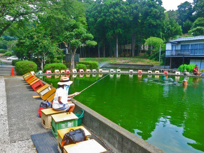 三種類の池で異なった釣り体験を味わってみよう!