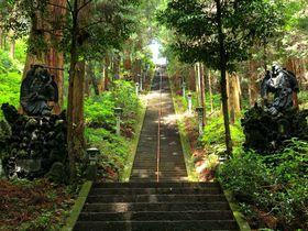 登山気分で天狗のパワースポットへ!神奈川「大雄山最乗寺」