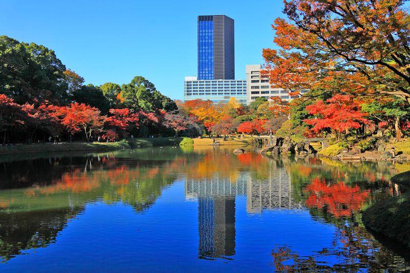 都心の真ん中で素晴らしい紅葉を拝もう!東京「小石川後楽園」