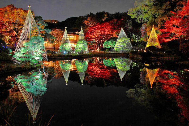 期間限定紅葉ライトアップが美しすぎ!文京区「肥後細川庭園」