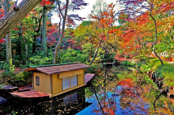 「根津美術館」の庭園といえばこのアングルは代名詞!