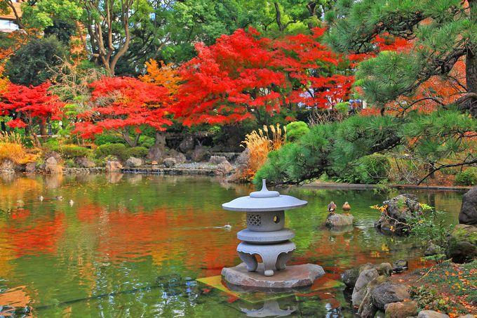 友好と平和の灯篭は「彼我庭園」ならでは!