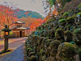 石仏に囲まれたパワースポットで紅葉観賞!京都「愛宕念仏寺」