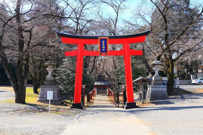 町田三天神の中でも一番規模が大きい「菅原神社」