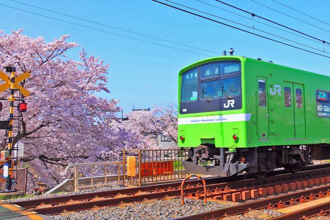 「佐保川」を横切るJR関西本線とのコラボも必見!