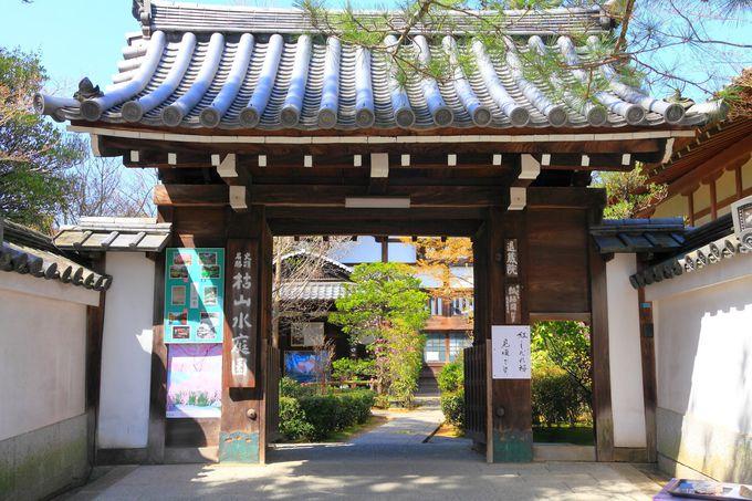 妙心寺の塔頭でもある退蔵院の山門