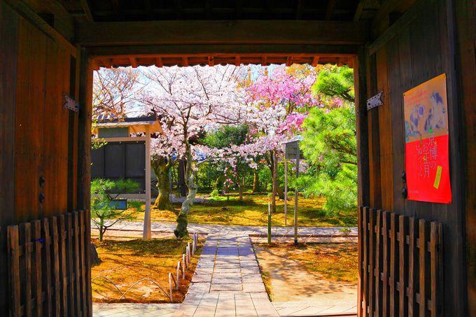 JR嵯峨野線の線路沿いに位置する「法金剛院」の表門