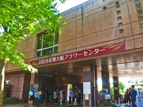 GW頃がオススメ!神奈川「日比谷花壇大船フラワーセンター」