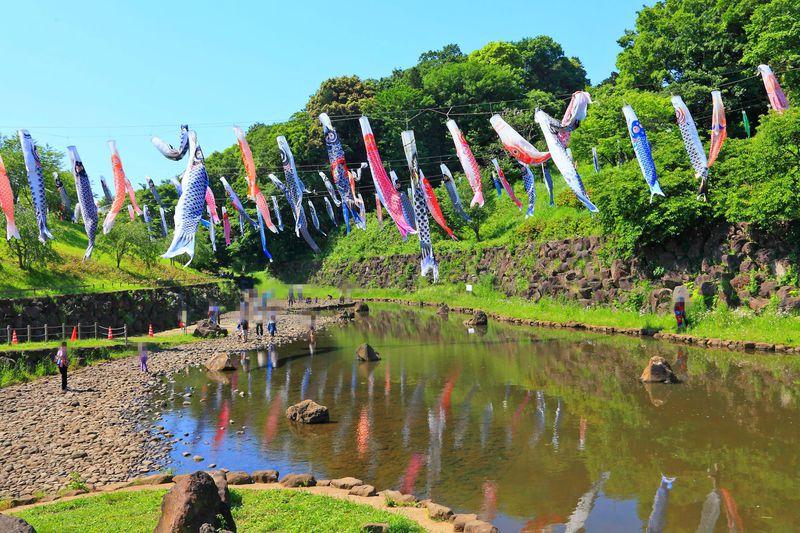沢山の緑に囲まれた神奈川「茅ケ崎里山公園」で子供と遊ぼう!