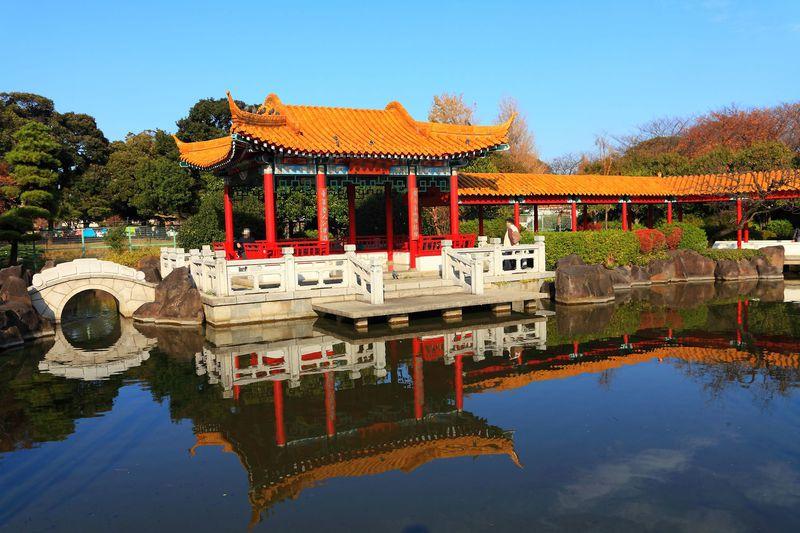 中華風の庭園に真っ赤な紅葉は必見!川崎の大師公園「瀋秀園」