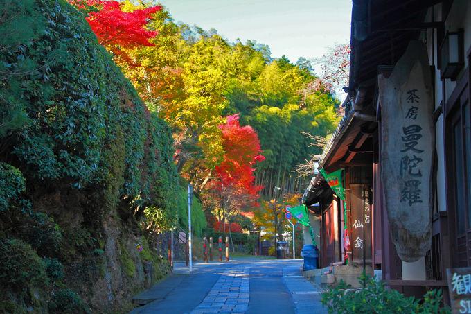 国の重要伝統的建造物群保存地区に選定されている「嵯峨鳥居本」