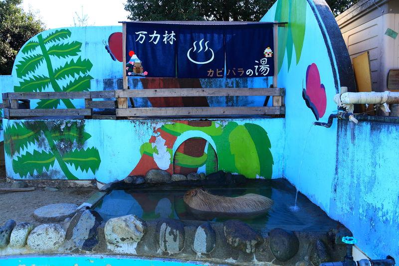 動物園も遊具も全部無料!1日中楽しめる山梨「万力公園」