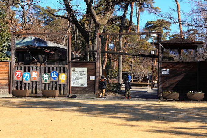 幹線道路から少し離れた位置にある「万力公園」の入口付近
