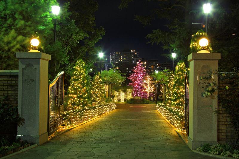 西洋風の園内に光り輝くイルミに感動!横浜「アメリカ山公園」