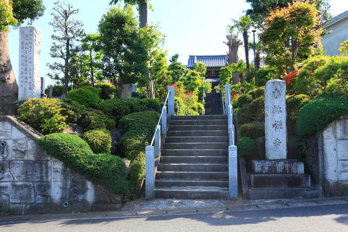 住宅街の坂を上り切ったところにある参道入口