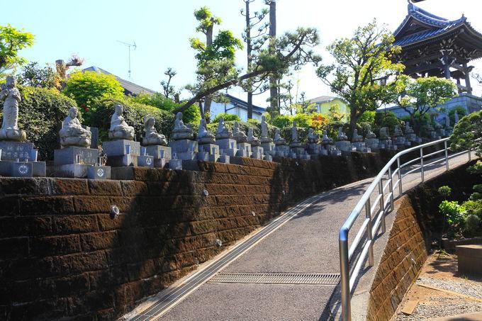 まず最初に出迎えてくれる「香林寺」の建造物