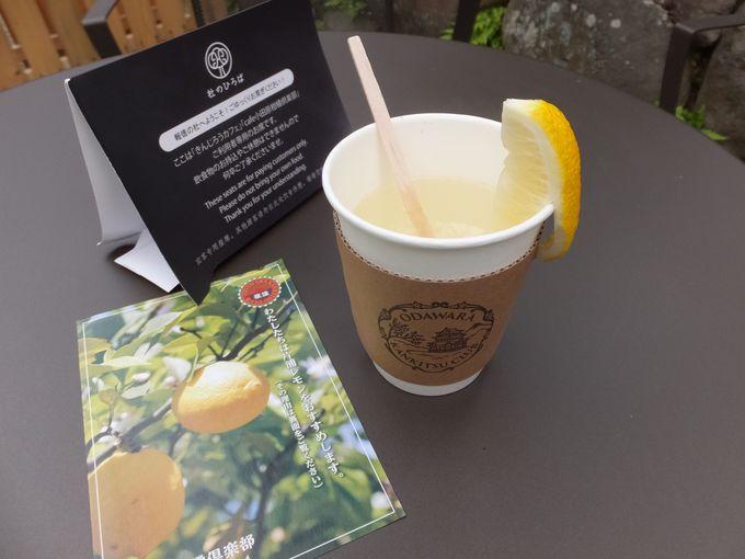 安心安全の片浦レモン果汁がたっぷりドリンク!