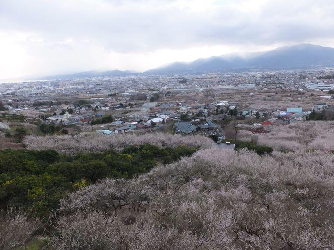 山の上から見下ろす眺めも絶景なり!