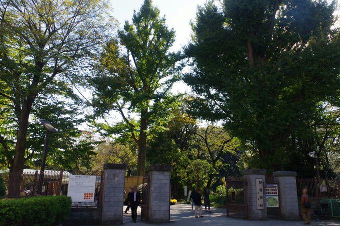 徳川家家臣の屋敷から皇室の庭園の歴史を持つ庭園