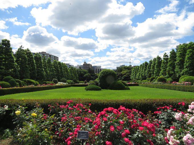歴史的建造物や秋バラの咲く花壇も楽しめる