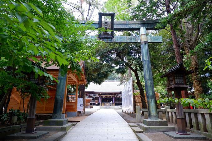 受験就職の味方の四之宮前鳥神社と地を鎮める一國一社平塚八幡宮