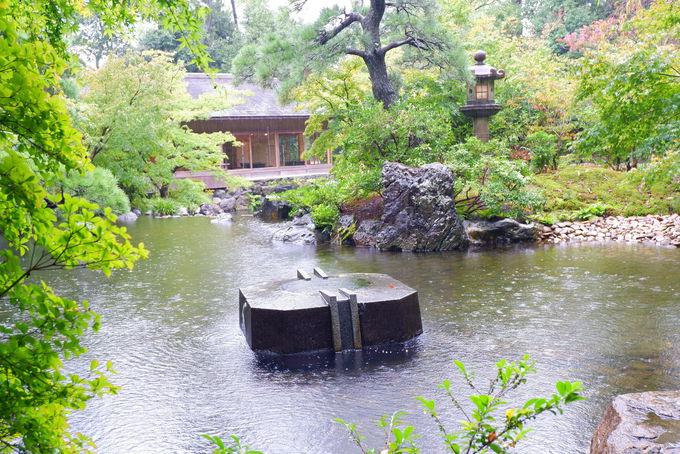 祈祷数日本一の八方除を受けたら特別な場所「神嶽山神苑」へ