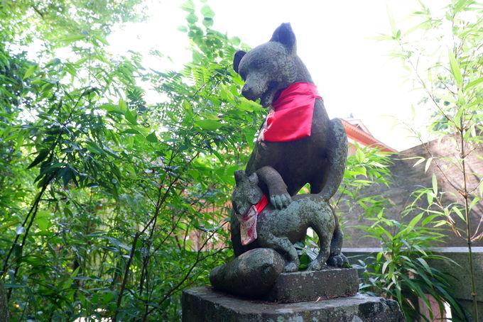 関東三大稲荷の一つ「白笹稲荷神社」とは