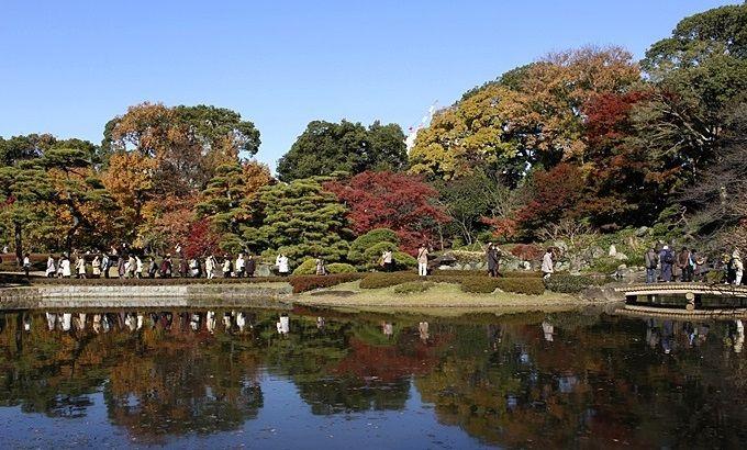 東御苑二の丸庭園の紅葉もオススメ
