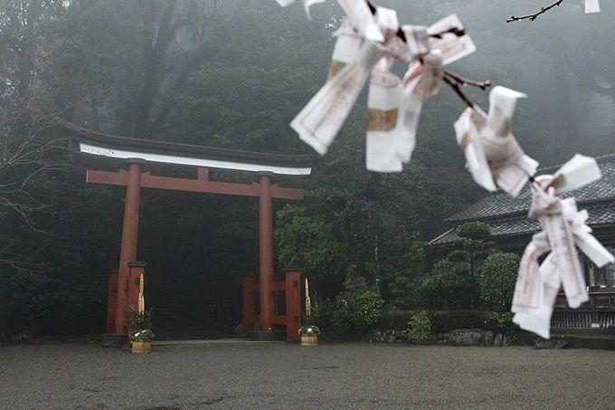 数々の神が宿る神聖な神社