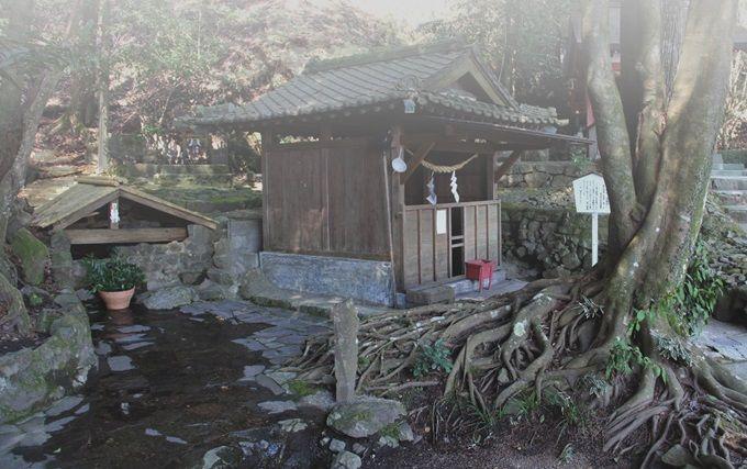 2.神水溢れる、神龍の泉『忍穂井』