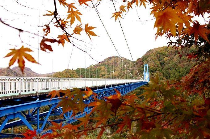 茨城県のおすすめ紅葉スポット10選 もみじまつり・ライトアップも!