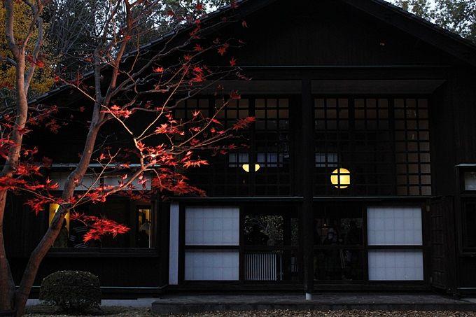 紅葉とライトアップで更にノスタルジック。秋の江戸東京たてもの園