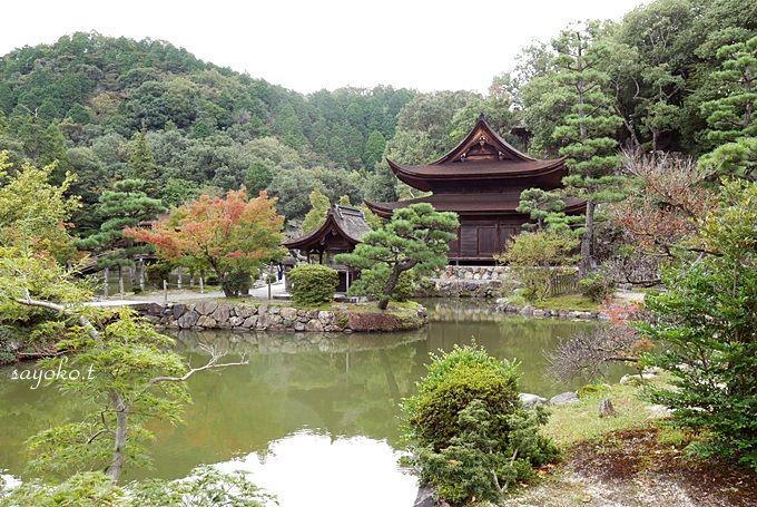 虎渓山にひっそりと佇む「永保寺」では、美しい風景に酔いしれる