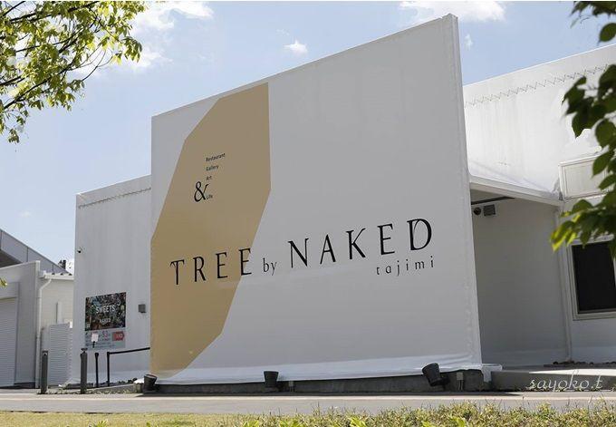 食×アート体験型レストラン「TREE by NAKED tajimi」の3Dマッピング楽しむ