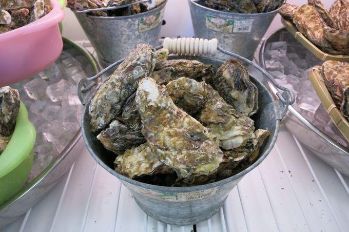10.牡蠣はマスト。安い!うまい!「かき小屋」へ