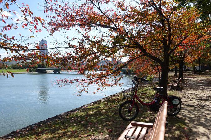 美しい川辺を走ってみよう、広島はポタリングに最高の街